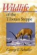 Natuurgids Wildlife of the Tibetan Steppe | Chicago Press