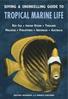 Diving & Snorkelling Guide to Tropical Marine Life