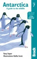 Natuurgids Antarctica: A Guide to the Wildlife | Bradt