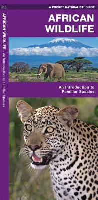 Natuurgids African Wildlife - an introduction to familiar species   Waterford Press