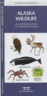 Natuurgids Alaska Wildlife - An introduction to familiar species : Waterford Press :