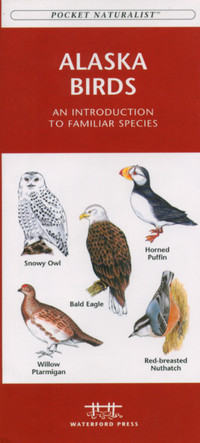 Natuurgids Alaska Birds : Waterford Press :