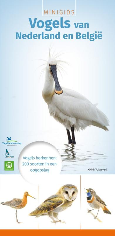 Natuurgids Minigids Vogels van Nederland en Belgi�   KNNV