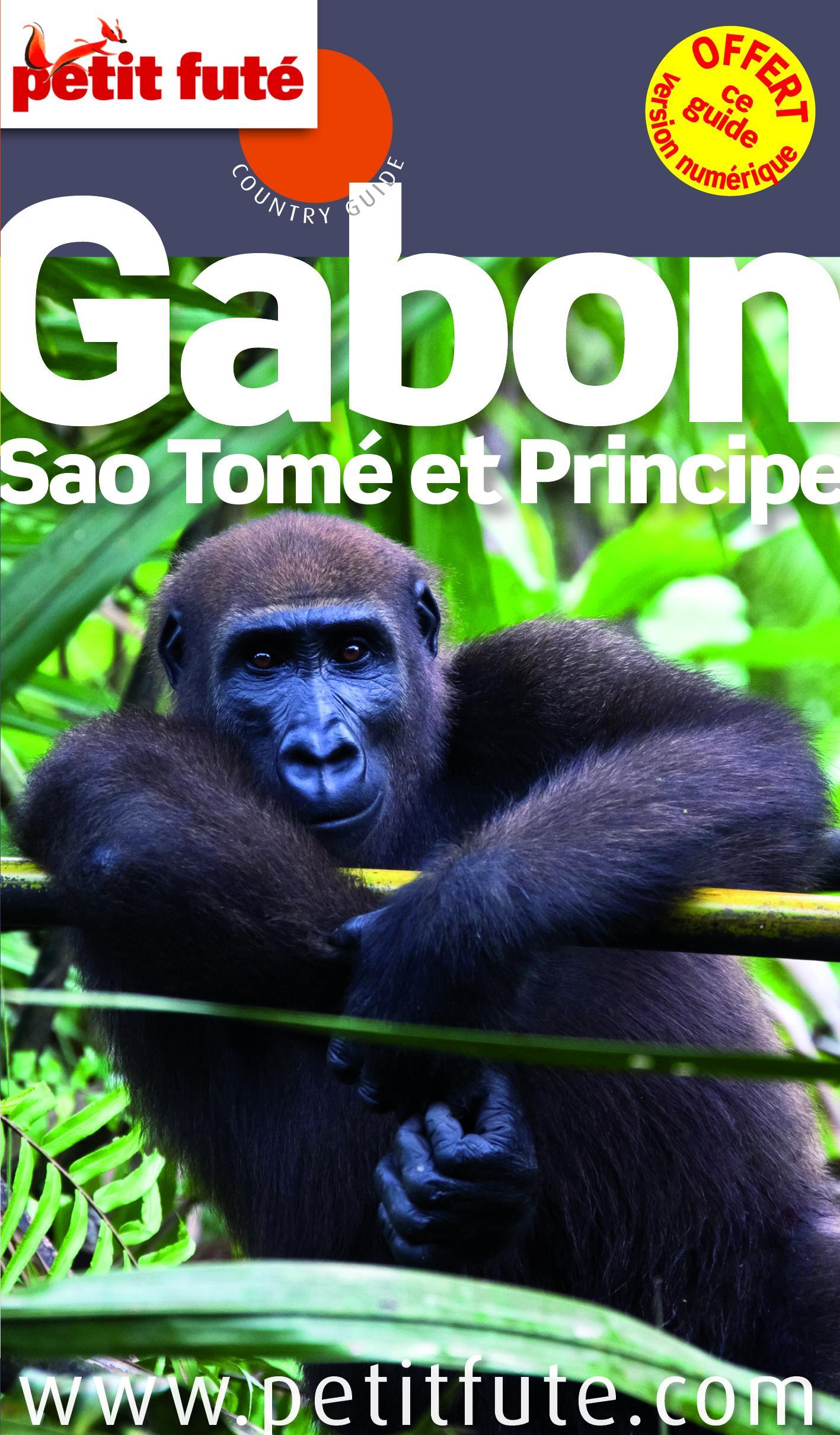 Reisgids Gabon et Sao Tome   Petit Fute