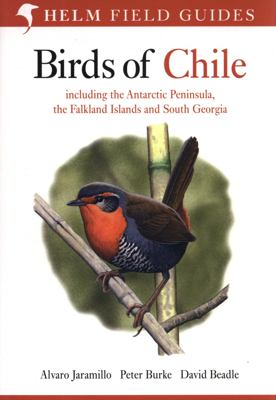 Vogelgids Chili - Birds of Chile   Helm field guides
