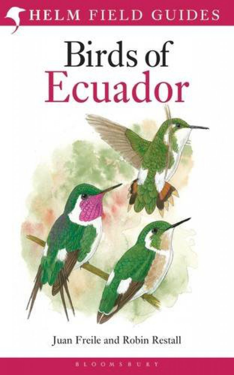 Vogelgids Ecuador - Birds of Ecuador   Helm field guides