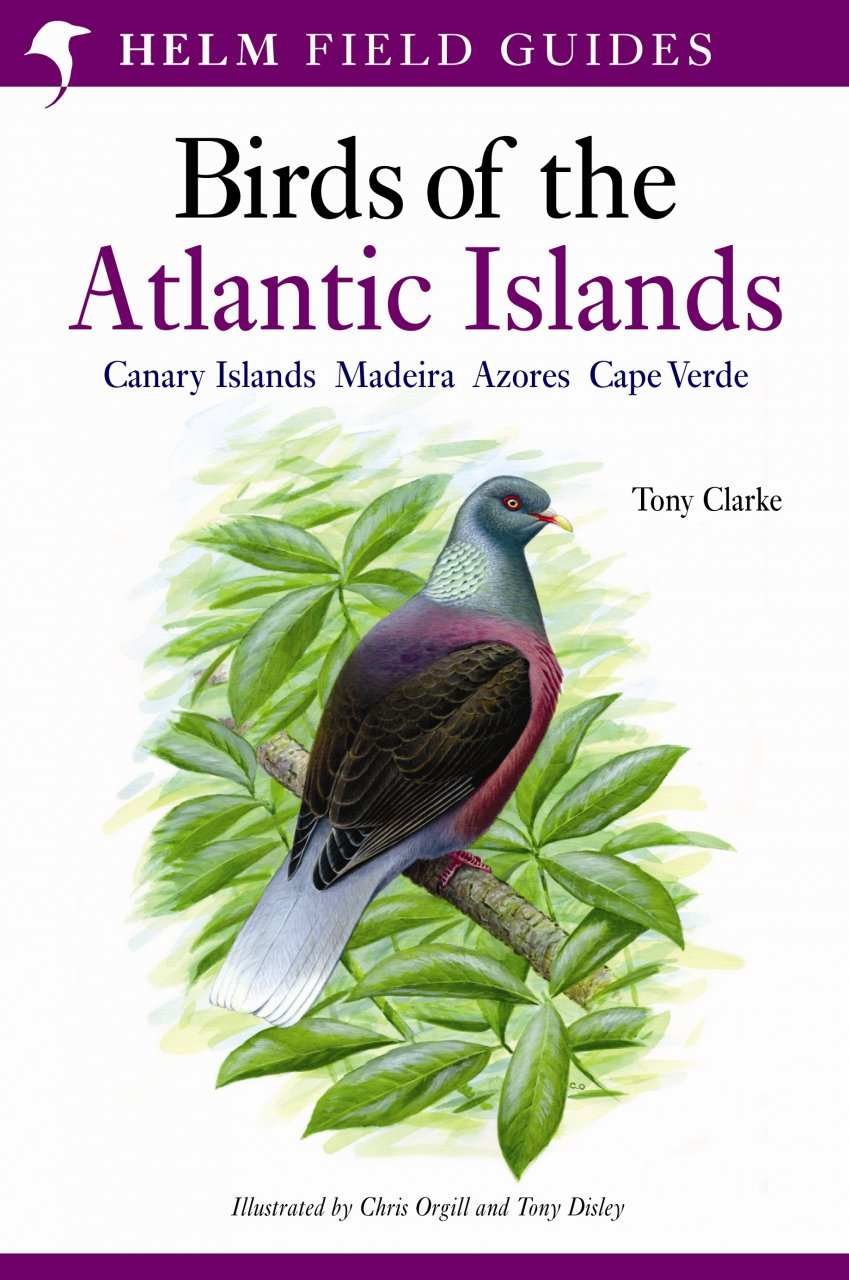 Vogelgids Birds of the Atlantic Islands: Canary Islands, Madeira, Azores, Cape Verde   Helm Field guides