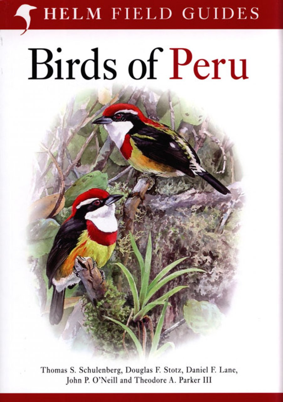 Vogelgids Peru - Birds of Peru   Helm Field guide
