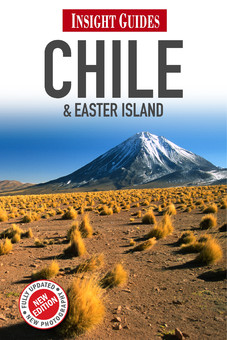 Reisgids Chile - Chili   Insight Guides ENGELS