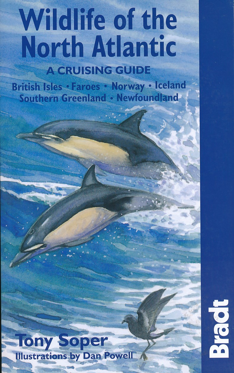 Natuurgids Wildlife of the North Atlantic   Bradt guides   Tony Soper