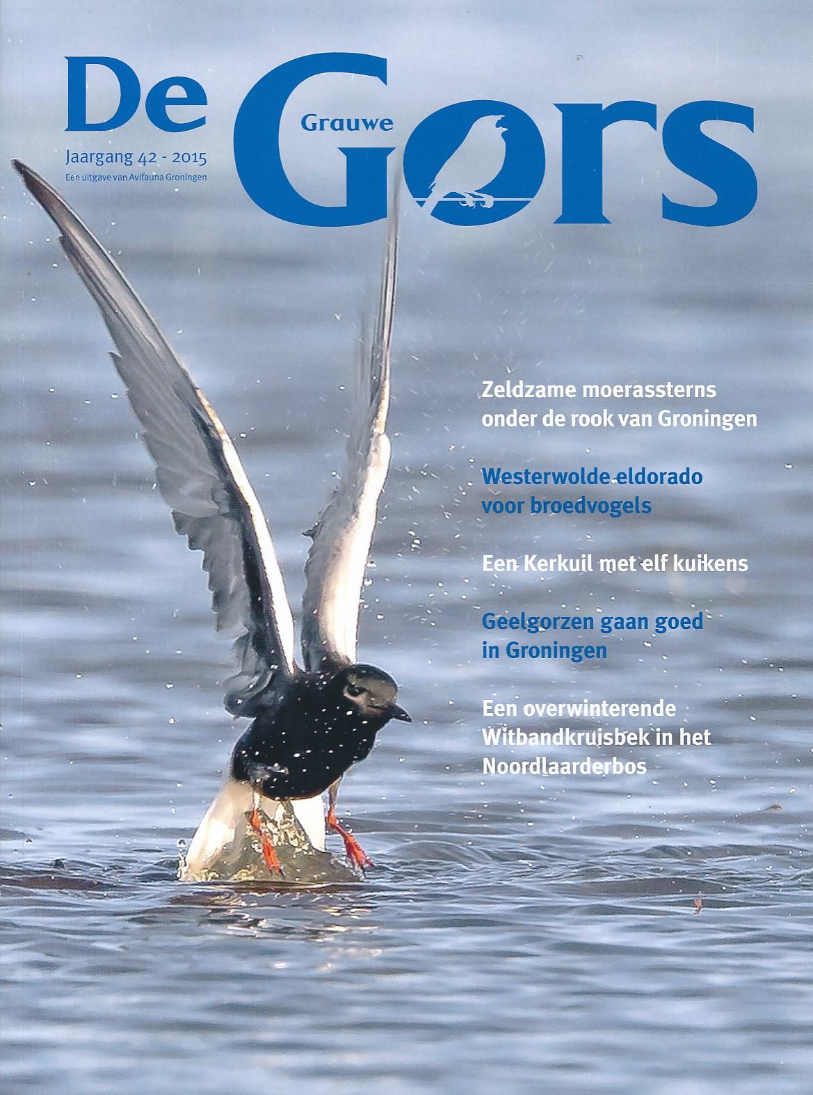 De Grauwe Gors jaarblad   Avifauna Groningen