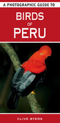 Vogelgids Photographic Guide to Birds of Peru : Struik :