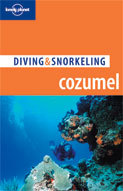 Duikgids Cozumel: Diving & Snorkeling Guide   Lonely Planet