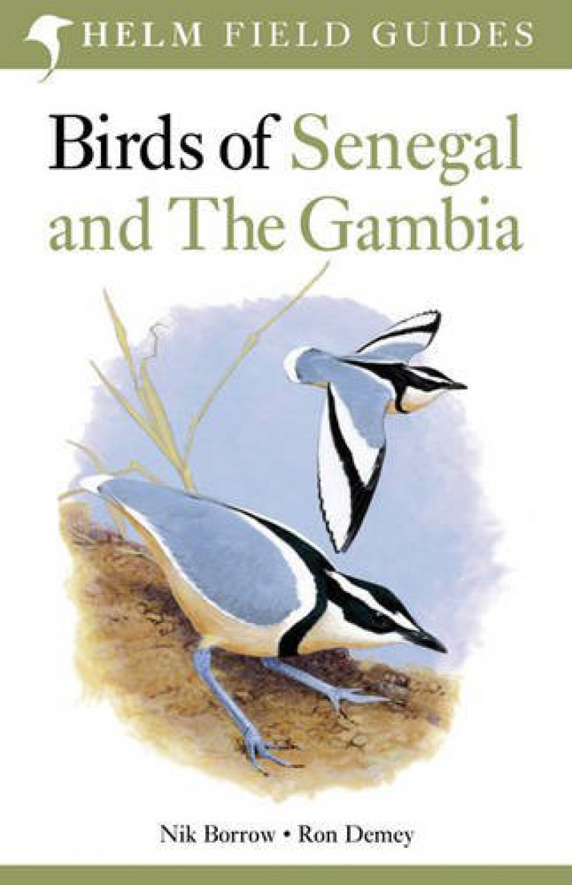 Vogelgids Birds of Senegal and The Gambia   Helm Fiels Guides