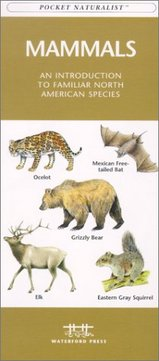 Mammals : An Introduction to Familiar North American Species / natuurgids - kaart USA :
