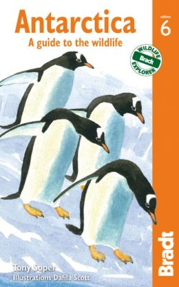 Natuurreisgids Antarctica: A Guide to the Wildlife   Bradt Nature guides