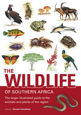 Natuurgids The wildlife of southern Africa   Struik
