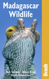 Reisgids - Madagascar Wildlife - Madagaskar : Bradt guide :